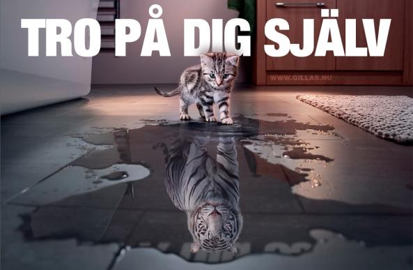 tro-pa-dig-sjalv-tiger-katt